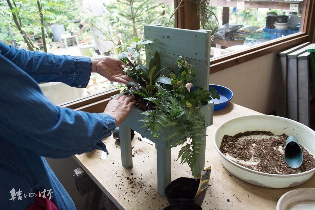 木製スツール&寄せ植えレッスン
