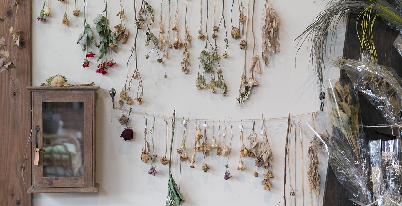 植物と人、人と人<br>様々な出会いを結ぶ